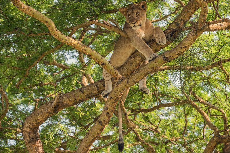 Uganda_T_QE-31.jpg