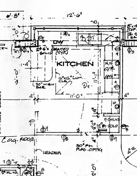 Dallas House Floor Plan Kitchen.jpg