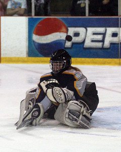 SMS Jr Hockey B Team @ Hamilton Junior Cup - April 6-7, 2010
