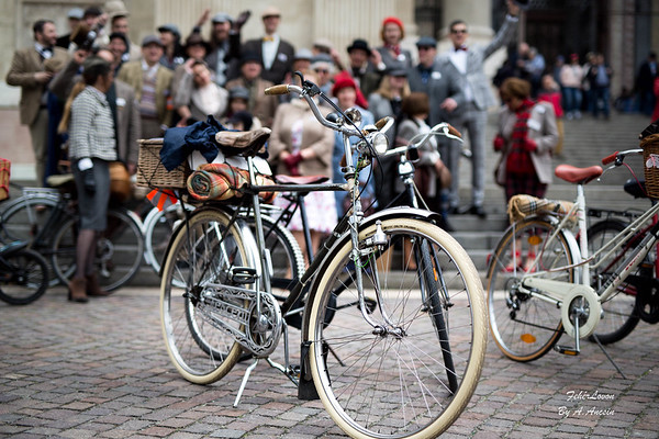 Tweed Run Bp 2017.04.29