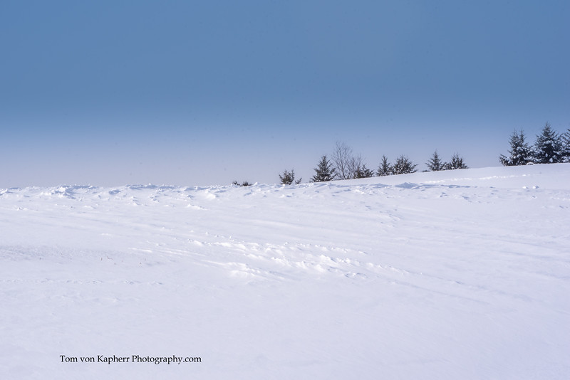 Tom von Kapherr Photography-7460.jpg