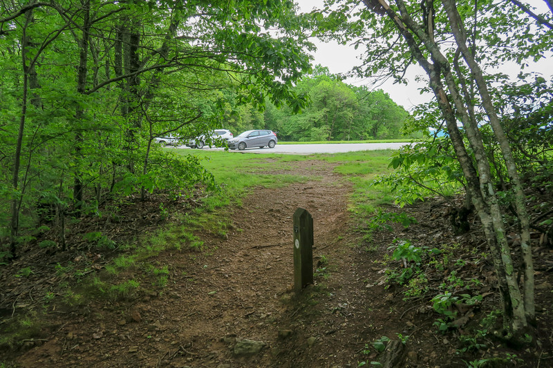 Sleepy Gap Overlook Trailhead (Mountains-to-Sea Trail) -- 2,930'