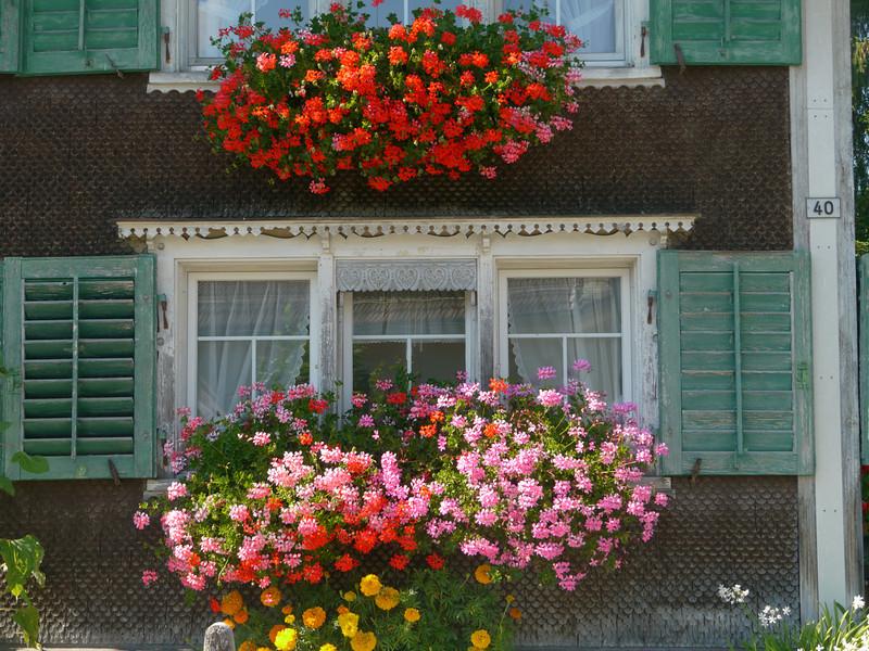 @RobAng 2012 / Ebnat, Ebnat-Kappel, Kanton St. Gallen, CHE, Schweiz, 634 m ü/M, 01.08.2012 16:43:53