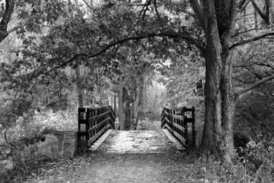 Paths of Fair Hill series