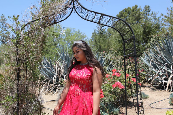 Quince Pictures
