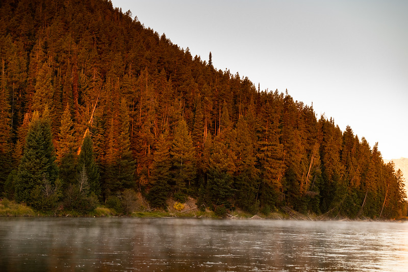 The early morning sun cast its glow, and mist hovers along the Snake River - Grand Teton National Park, Wyoming