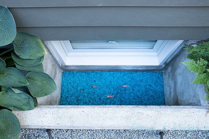 Lisa Bauer - designer's garden_1260.jpg
