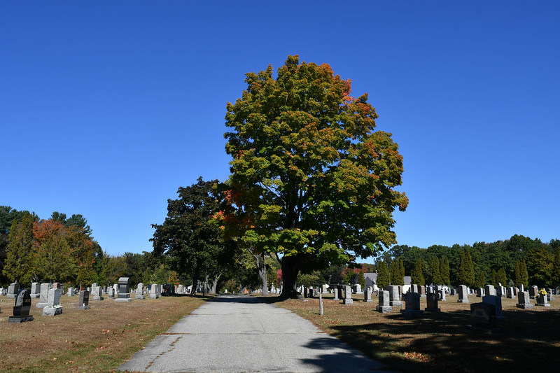 St-Joseph-Cemetery-Oct2019-152.jpg