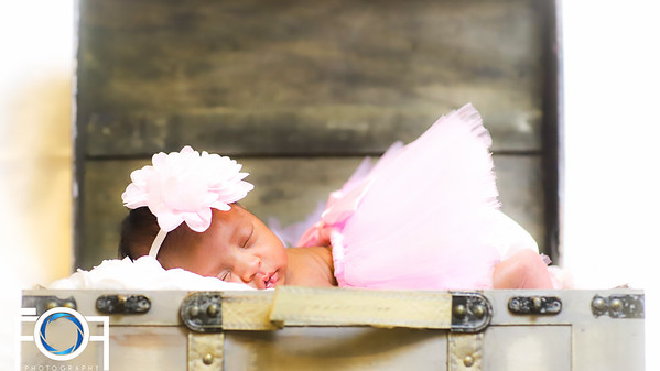 Kylie's Newborn Photos