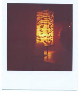Polaroid 699 Film