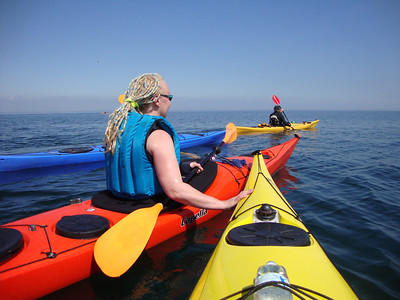 Bass Rock Sea Kayak Trip 23/05/2010