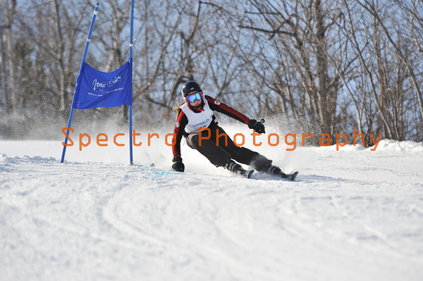 OFSAA Alpine 2012 Level I GS