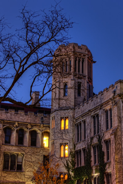 Univ Chic at Night.jpg