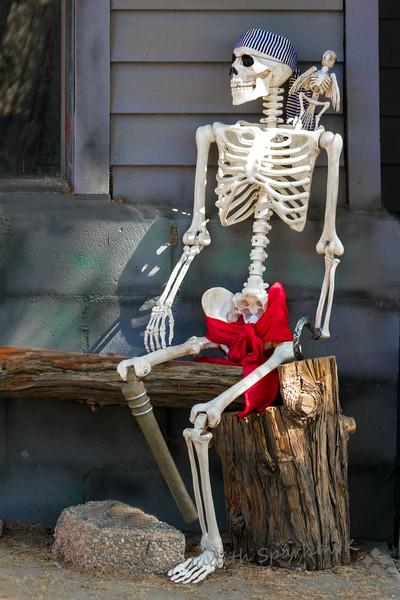 The Pirate Skeleton