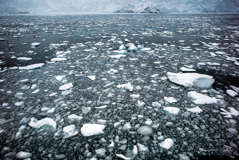 9-2-16175505 magdalene fjord, svalbard.jpg