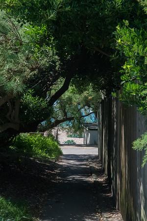Janine Lowe Beach-264.jpg