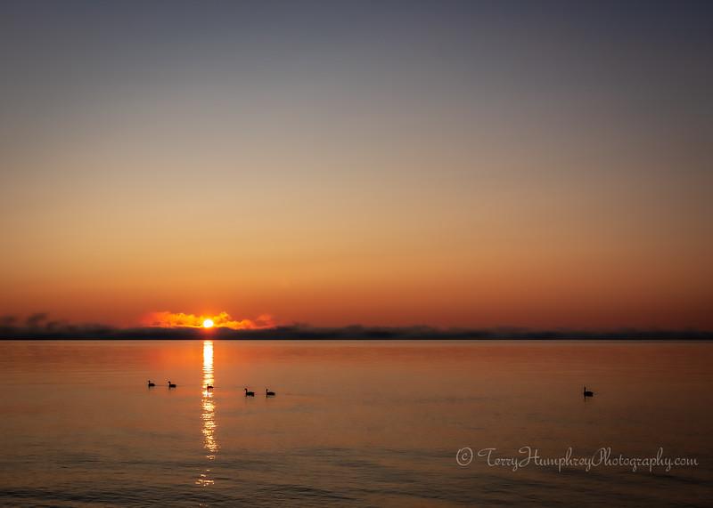 Sunrise 8-7-2019-7.jpg