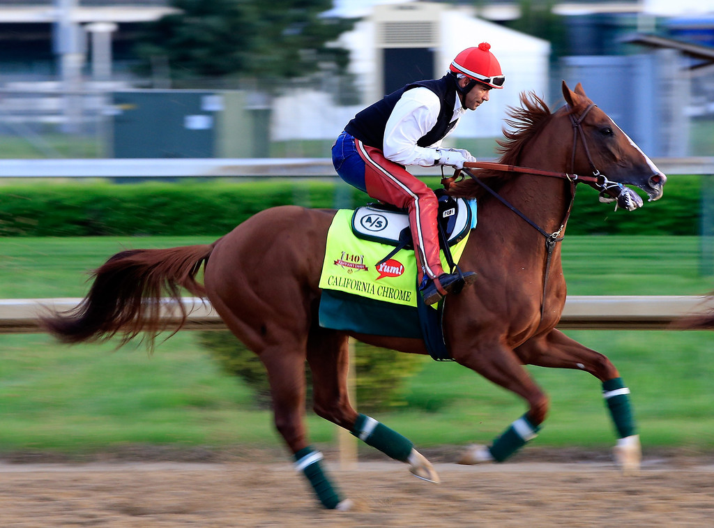 . Kentucky Derby contender California Chrome works during early morning workouts at Churchill Downs on May 1, 2014 in Louisville, Kentucky.  (Photo by Jamie Squire/Getty Images)