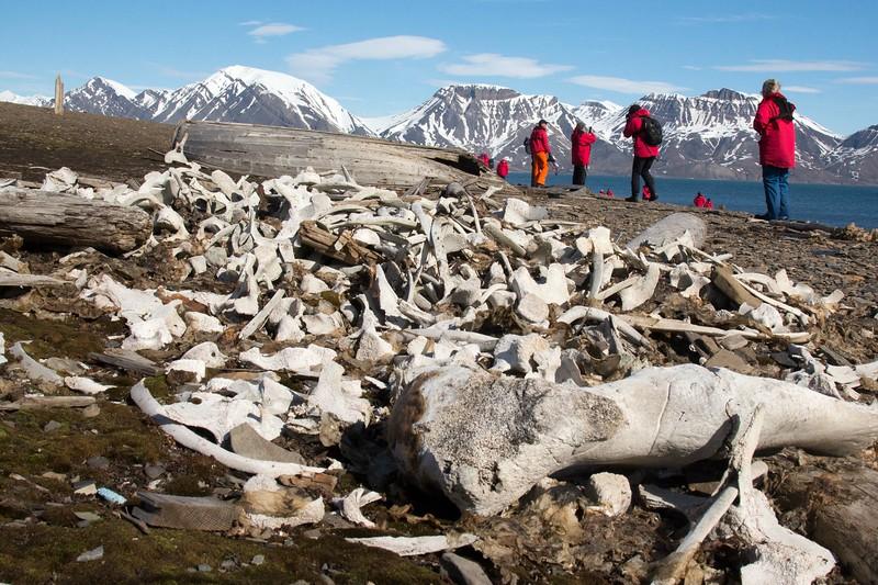 Svalbard - High Res-43.jpg