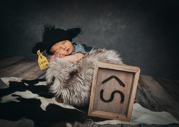 Layton Newborn 2018