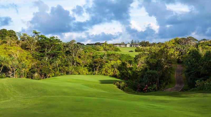 princeville-golf-photography-15.jpg