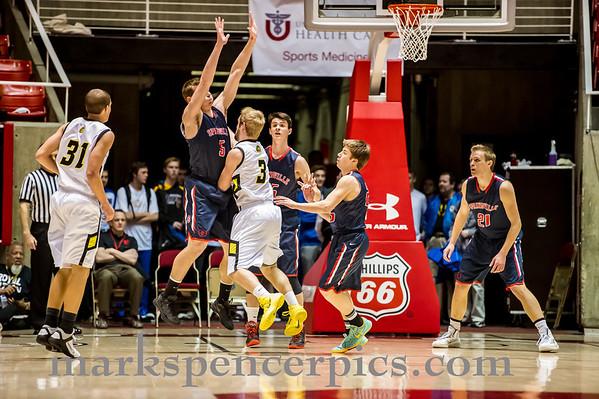 Basketball ST SHS vs Roy 3-5-2014