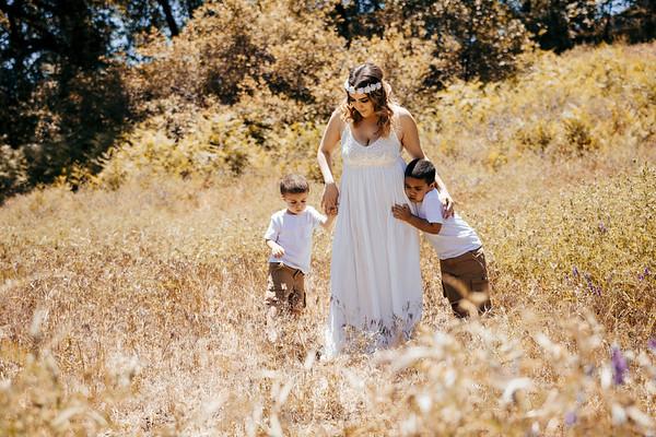 Mommy & The Boys