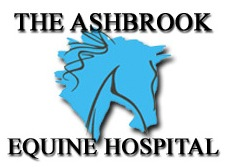 Ashbrook Equine Hospital