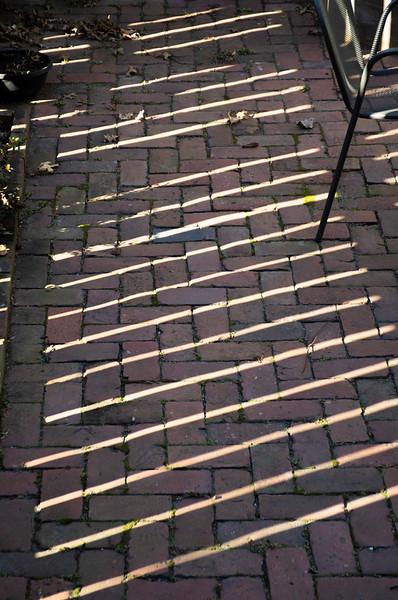 Fence Shadows.jpg