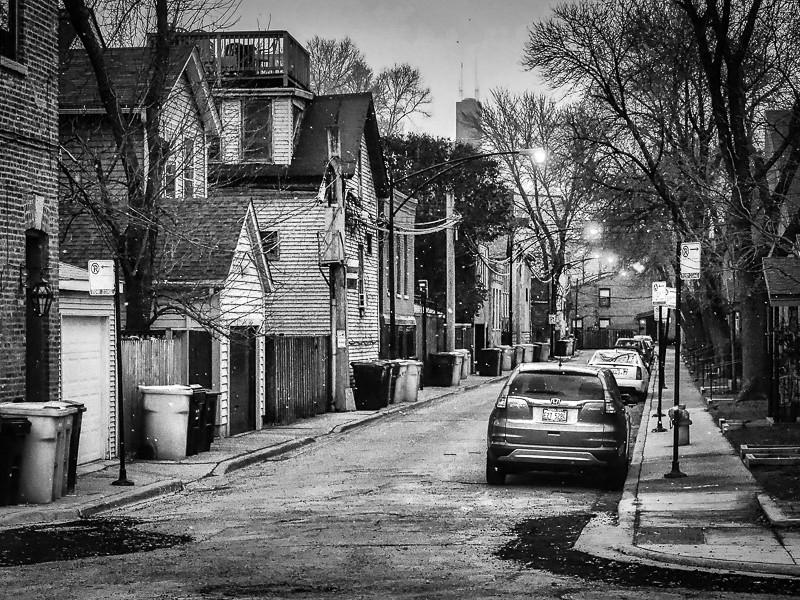 November 27 - Lincoln Park_ Chicago.jpg