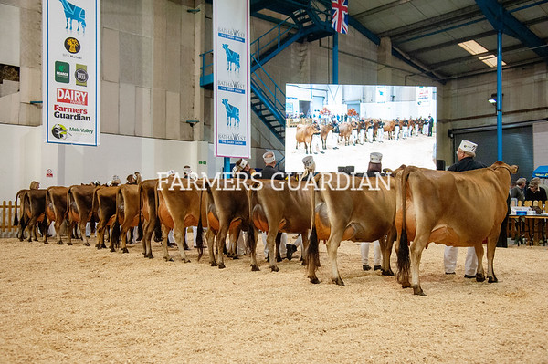 Bath and West Dairy Show 2019