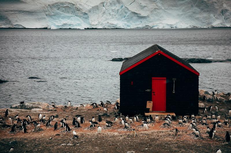 _MG_6585_20170121_Antarctica.jpg