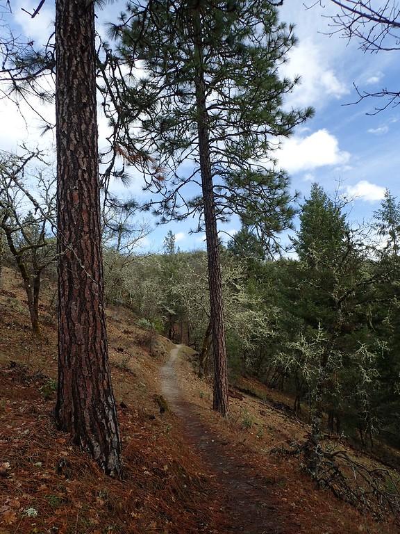 Cathedral Hills Park Grants Pass Oregon