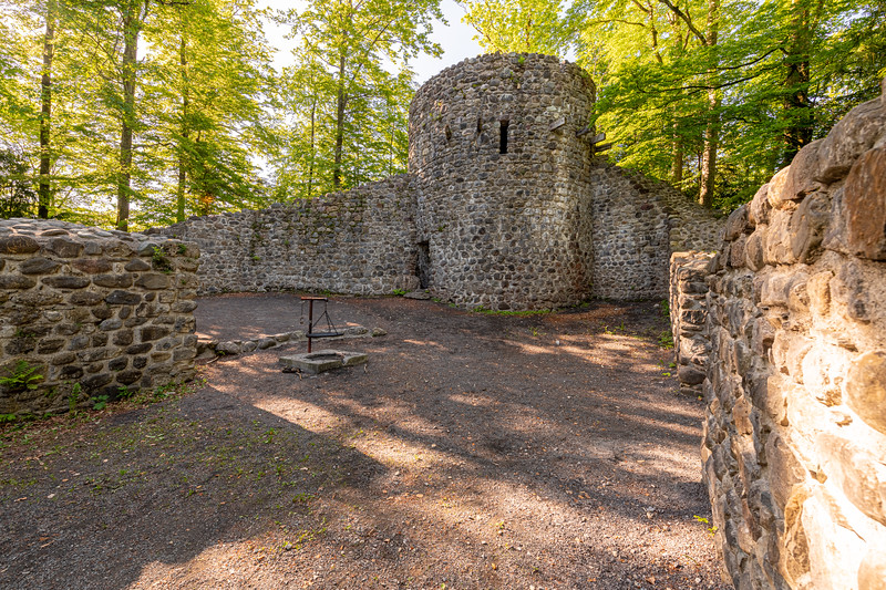 Burgruine Wildenburg III