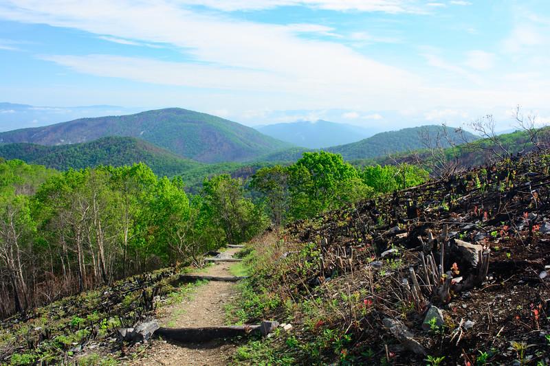 loft-mountain-255.jpg