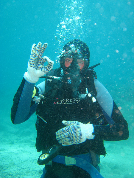 Diving in the Galapagos (289 of 392)