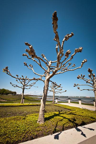 Charleston 201304 (40).jpg