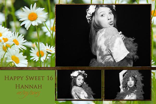 Hannah's Sweet 16 Party