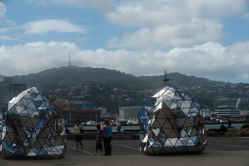 Wellington5556.jpg