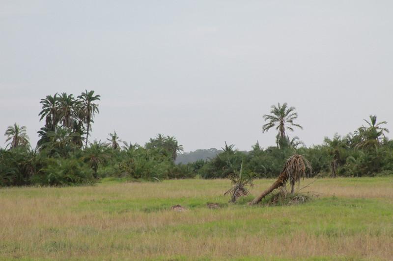Kenya 2019 #2 347.JPG