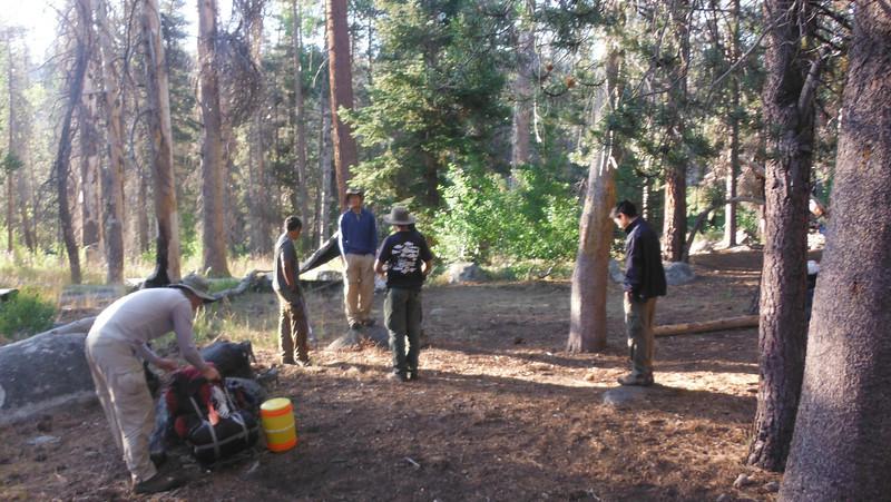 sequoia 048.JPG