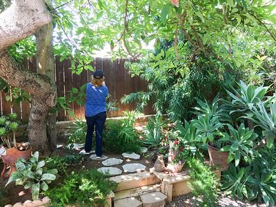 2017 Sherrie's  yard and June Meeting