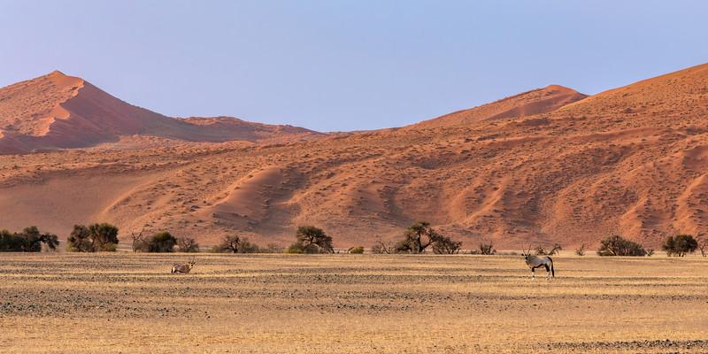 Namibia 69A4067.jpg
