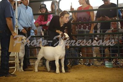 9-26-21 Sunday Goat Show