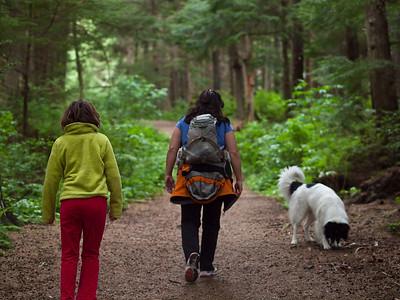 Walk to John Muir cabin