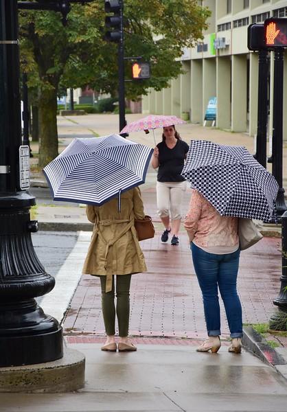 Rainy August Day - 081318
