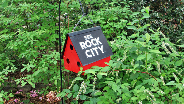 Rock City in Chattanooga and Gatlinburg
