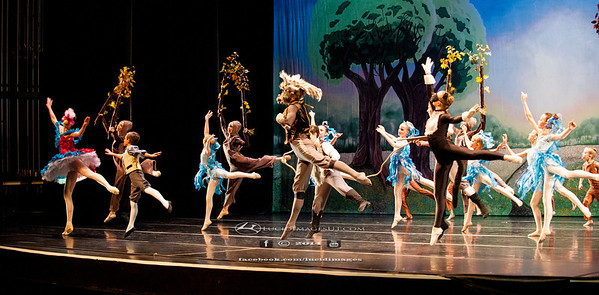 Imagine Ballet Peter & The Wolf