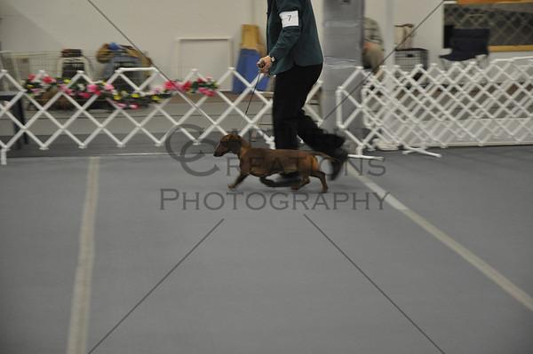 DCGS 2011: Sunday Smooth