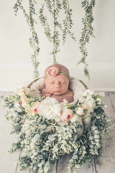 rockford_newborn_photography_O011.jpg